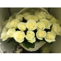 Корзина из 51 белой розы СПБ