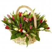 51 разносортный тюльпан в корзине с декором