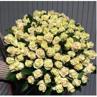 """101 роза  """"Талея"""""""