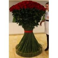 Роза Эксклюзив 25 шт. (1,5 метра)