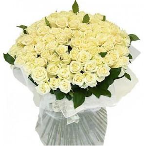 101 белая роза 60 см СПБ