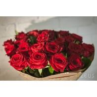 Розы гран при, роза ред наоми СПБ