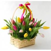 25 тюльпанов микс в корзинке