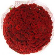 201 красная роза 80 см
