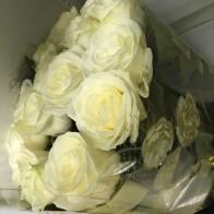 15 белых роз СПБ