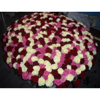 501 роза в корзине микс