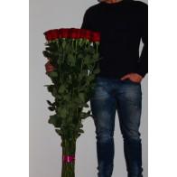 Розы 1.20-1.40 25 шт.
