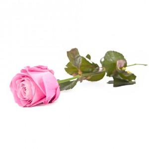 Роза «For Love» 29 шт.