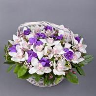 Корзина с орхидеями «Райское наслаждение»