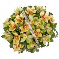Корзина с орхидеями большая
