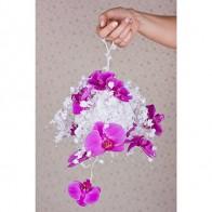 Нежность орхидей