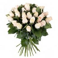 Букет из кремовых роз (25 шт.)