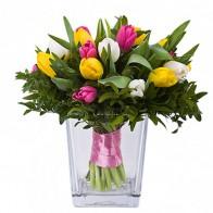 Весенний микс (25 тюльпанов)