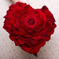 Букет невесты Красная гламелия