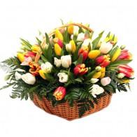 """Корзина """"75 тюльпанов с декоративной зеленью"""""""