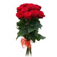 11 красных роз СПБ